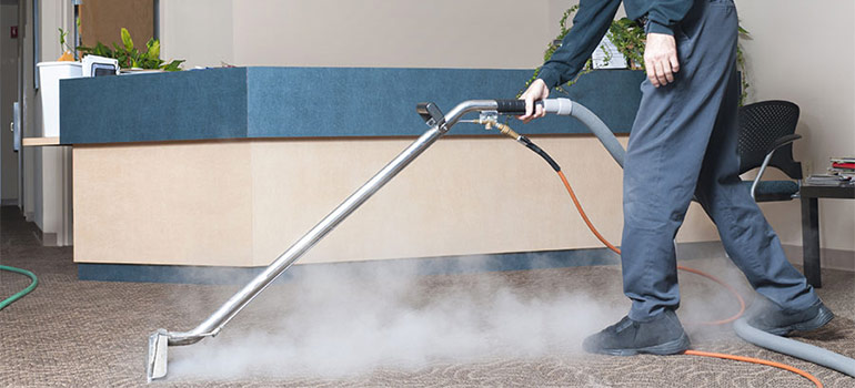 Professional Steam Extraction for Carpet Cleaning